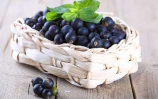 Польза смородины для беременных. Лечебные свойства черной смородины