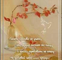 Поздравление с днем рождения стихами классиков