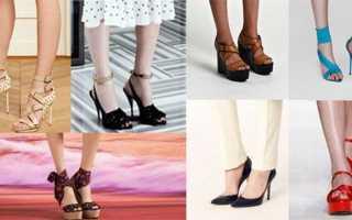 Популярный вид женской обуви на каблуке. Основные виды женской модной обуви