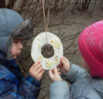 Проекты по экологии. Экологические проекты в детском саду