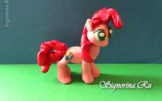 Как слепить пони принцессу. Пони из пластилина (Искорка). Поэтапный фото урок