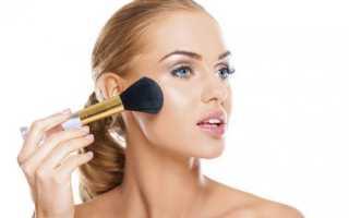 Пудра для лица: главные советы. Пудра для жирной кожи: правила выбора