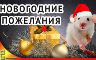 Пожелания на новый год предложениями. Короткие пожелания с новым годом