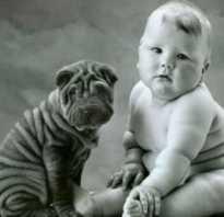 Дети толстеют. Детское ожирение: почему ребенок толстеет