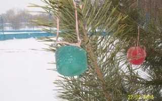 Ледяные игрушки на елку. Новогодние игрушки своими руками. Кубики изо льда