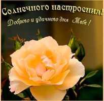 Пожелание хорошего завтрашнего дня. Красивые пожелания хорошего дня
