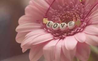 Любишь ли ты человека или нет: советы. Как понять, любишь ли ты