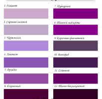 Сочетание синего и фиолетового. Цветовые сочетания в одежде