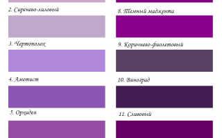 Салатовый синий фиолетовый. Фиолетовый цвет в одежде — модные сочетания