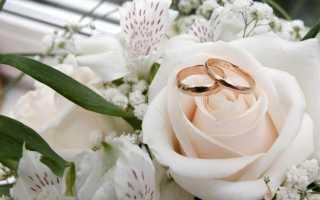Никелевая, шелковая свадьба (12 лет)