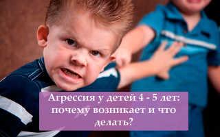 Детская агрессия в три года: как справиться? Агрессивный ребенок