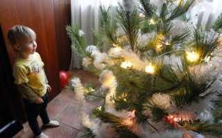 Новогодняя елка история традиции (9 фото). Новогодняя елка