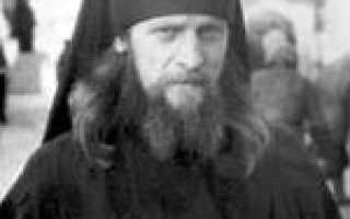 Жизнеописание инока Трофима (Татарникова). Химическая реакция