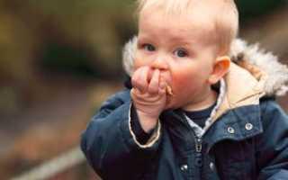 Если ребенок болеет и не ест. Ребенок плохо ест