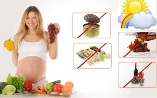 Какие продукты есть беременной. Беременность: что можно, а что нельзя