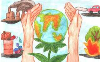 Экологические проекты. Проект на тему: Проект по экологическому воспитанию