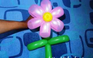Цветы из длинных шаров своими руками схемы. Как сделать цветы из шариков фото